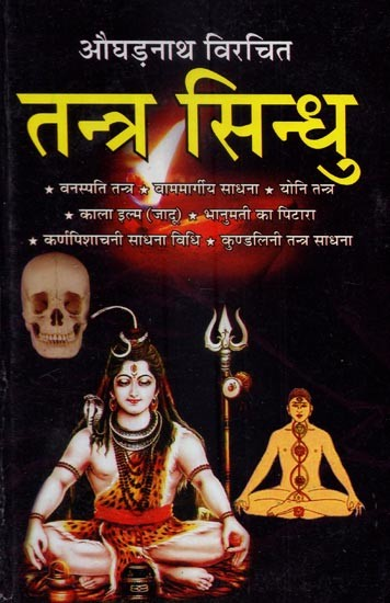 tantra and agama Tantra as genre of literature in hinduism have been influential to its a express yourself the tantra-agama texts of hinduism present a diverse range of.