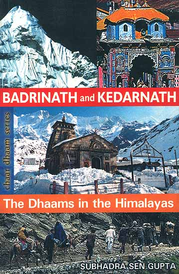 Badrinath and Kedarnath: The Dhaams in the Himalayas