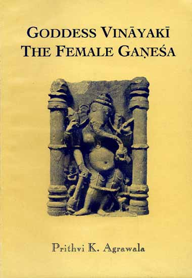 dance essay fourteen indian siva Buy a cheap copy of dance of siva fourteen indian essays book  free shipping over $10 1918 contents: what has india contributed to human welfare hindu view of art: historical and theory of beauty that beauty is a state buddhist primitives dance of siva indian images with many arms.