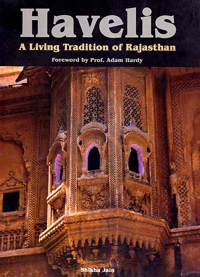 Havelis A Living Tradition Of Rajasthan