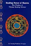 Healing Power of Mantra (The Wisdom of Tibetan Healing Science)