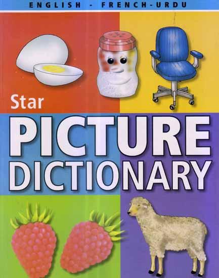 english to roman urdu dictionary