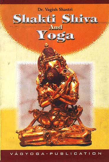 Shakti Shiva and Yoga