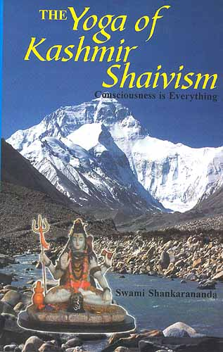 The Yoga of Kashmir Shaivism Consciousness is Everything