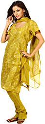 Olive-Green Salwar Kameez Fabric with Metallic Thread Embroidery and Sequins