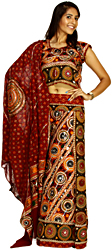 Multi-Color Lehenga Choli with All-Over Embroidered Chakras and Thread Work