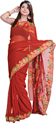 Chilli-Pepper Red Sari from Kashmir with Ari Embroidery on Border and Aanchal