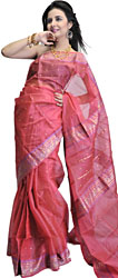 Claret-Pink Chanderi Sari with Woven Bootis and Brocaded Anchal