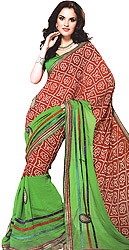 Green and Red Sari with Patch Work and Bandhani Print