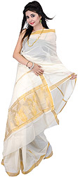 Ivory Kasavu Sari with Golden Thread Weave