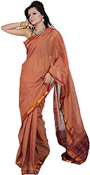 Pecan-Brown Gadwal Sari Hand-woven in Seemandhra