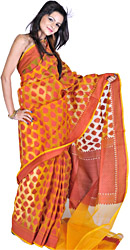 Butterscotch Banarasi Sari from with Woven Floral Leaves in Red Thread