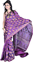 Byzantium-Purple Sari from Banaras with Large Woven Bootis and Brocaded Border