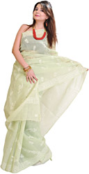Seafoam-Green Sari with Lukhnavi Chikan Embroidery by Hand