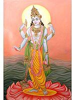 Shri Narayan (Lord Vishnu)