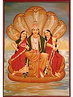 Lord Vishnu with Manifested Energy and Fertility