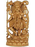 A Narrative Sculpture of Goddess Kali