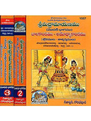 శ్రీమద్రామాయణము (బాలకాండము - అయోధ్యాకాండము): Complete Ramayana by Valmiki in Telugu (Set of 3 Volumes)