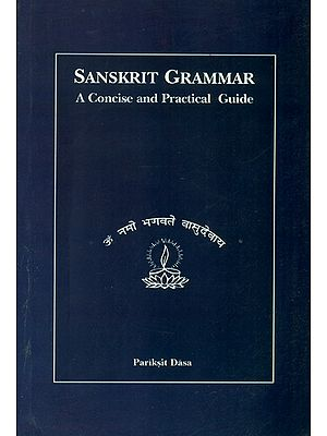 Sanskrit Grammar: A Concise and Practical Guide