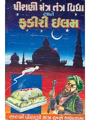 પીરાણી મંત્ર તંત્ર વિદ્યા: Pirani Mantra Tantra Vidya (Gujarati)