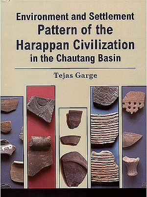 Environment and Settlement Pattern of the Harappan Civilization in the Chautang Basin