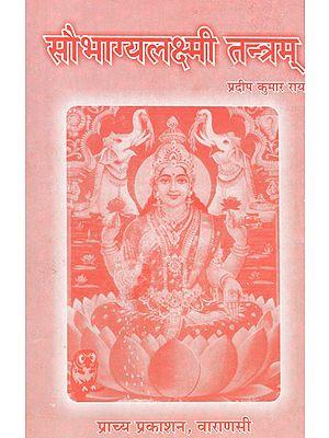 सौभाग्यलक्ष्मी तन्त्रम् - Saubhagya Lakshmi Tantram
