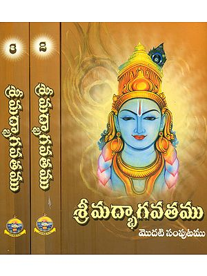 Shrimad Bhagavat in Telugu (Set of Three Volumes)