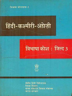 हिंदी कश्मीरी अंग्रेजी कोश : Hindi, Kashmiri and English Dictionary (An Old and Rare Book)