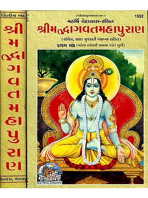 શ્રીમદ્ભાગવત મહાપુરાણ: Srimad Bhagavat Mahapurana in Gujarati (Set of 2 Volumes)
