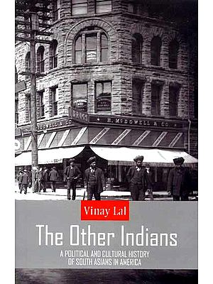 The Other Indians (A Political and Cultural History of South Asians in America)
