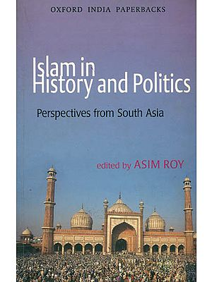 Islam in History and Politics (Perspeandalctives From South Asia)