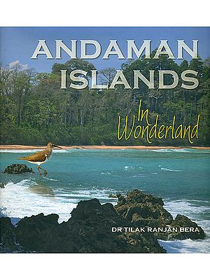 Andaman Islands in Wonderland