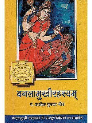 Baglamukhi Rahasayam - The Methods of Worshipping Goddess Bagalamukhi