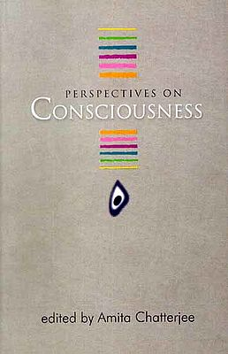 Perspectives on Consciousness
