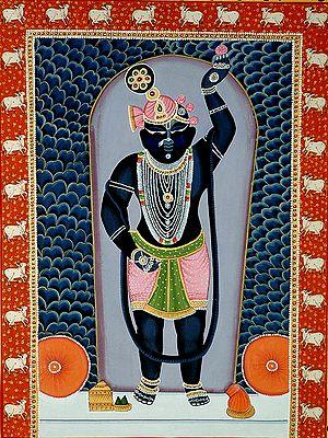 Adorable Krishna as Shrinathji