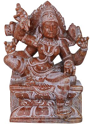 Goddess Durga of South India