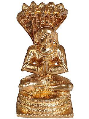 South Indian Saint