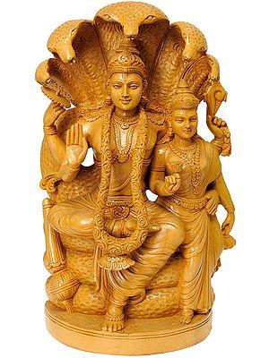 Vishnu and Lakshmi Ji Under Sheshanaga