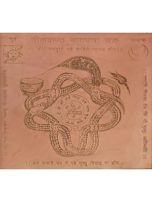 Neelkantha Nagapash Chakra (Yantra Prevents from Snake Biting)